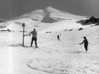 The new Top Tow (on the Policeman slopes), in the 1950's